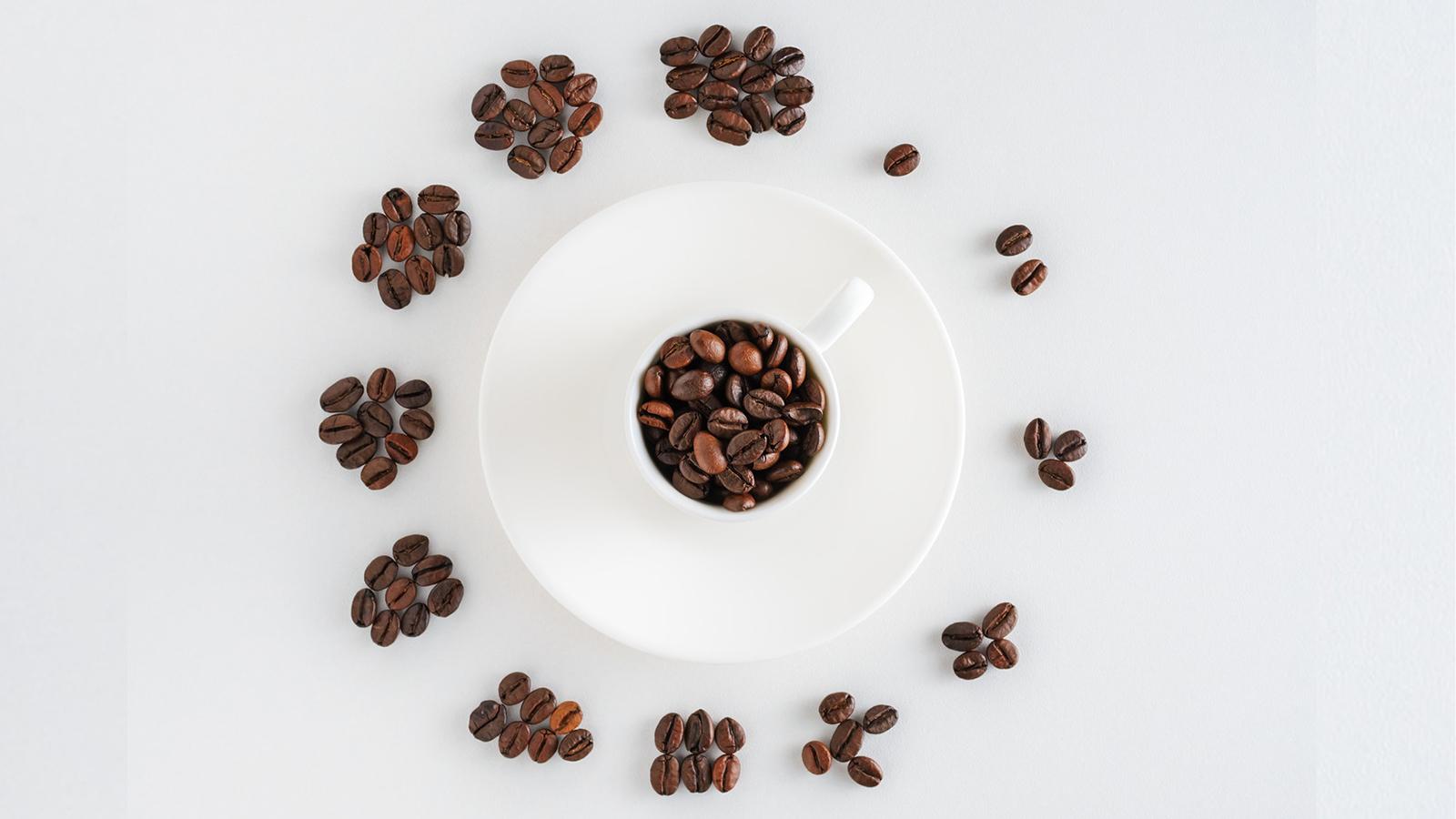 Coffee time - Fényképezés otthon - NEXTFOTO